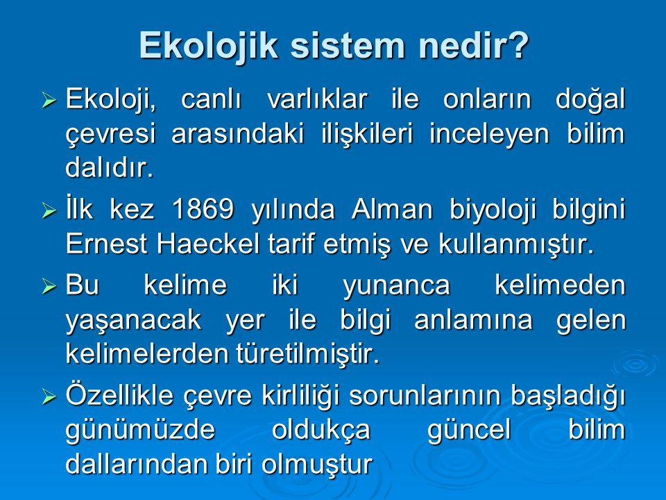 Ekolojik sistem nedir.