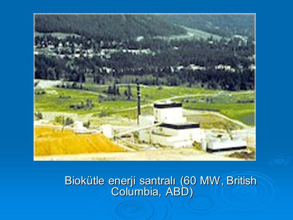 Biokütle enerji santralı (60 MW, British Columbia, ABD) Biokütle enerji santralı (60 MW, British Columbia, ABD)