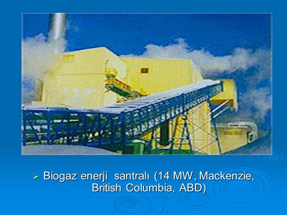  Biogaz enerji santralı (14 MW, Mackenzie, British Columbia, ABD)