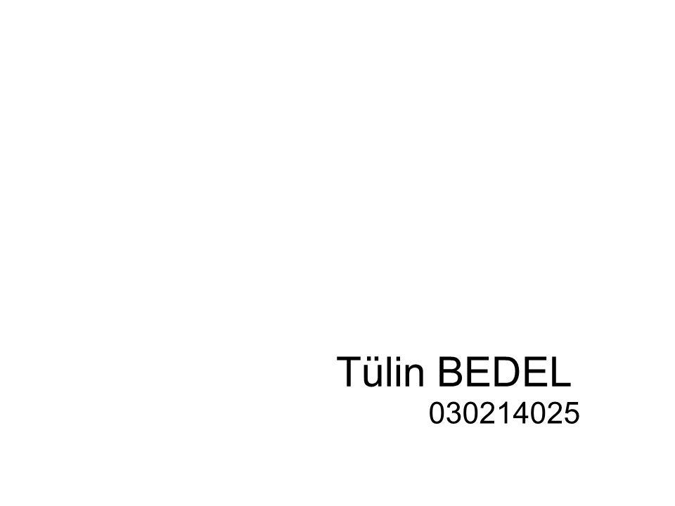 Tülin BEDEL 030214025