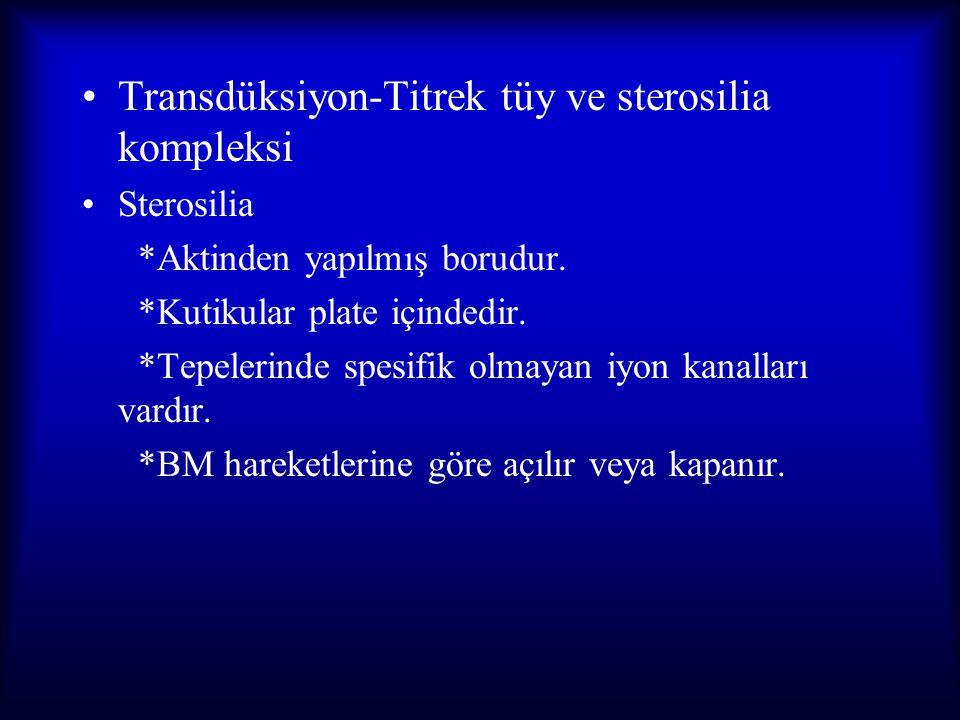 Transdüksiyon-Titrek tüy ve sterosilia kompleksi Sterosilia *Aktinden yapılmış borudur. *Kutikular plate içindedir. *Tepelerinde spesifik olmayan iyon