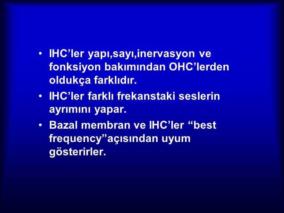 IHC'ler yapı,sayı,inervasyon ve fonksiyon bakımından OHC'lerden oldukça farklıdır. IHC'ler farklı frekanstaki seslerin ayrımını yapar. Bazal membran v