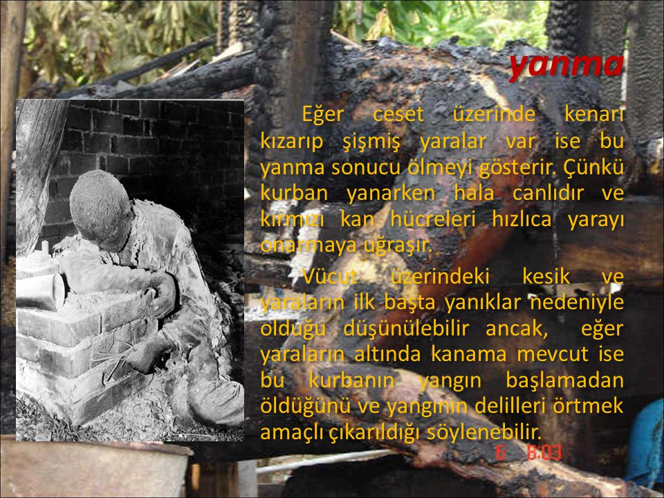 yanma Eğer ceset üzerinde kenarı kızarıp şişmiş yaralar var ise bu yanma sonucu ölmeyi gösterir. Çünkü kurban yanarken hala canlıdır ve kırmızı kan hü