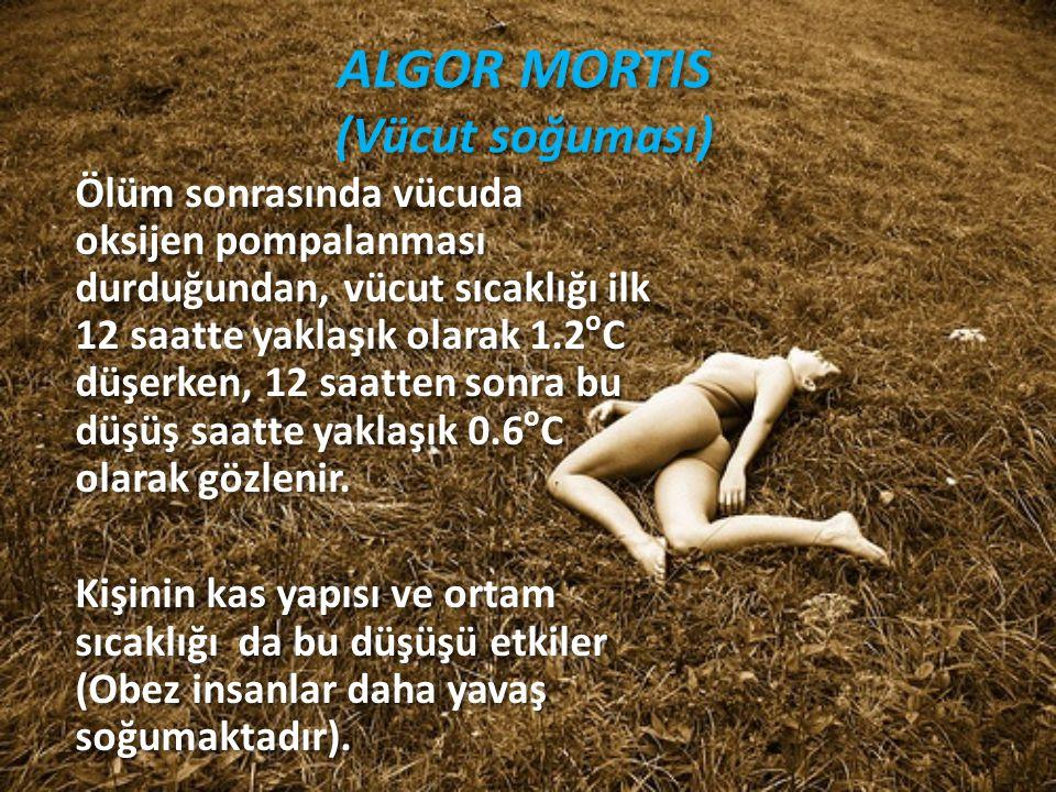 ALGOR MORTIS (Vücut soğuması) Ölüm sonrasında vücuda oksijen pompalanması durduğundan, vücut sıcaklığı ilk 12 saatte yaklaşık olarak 1.2 o C düşerken,