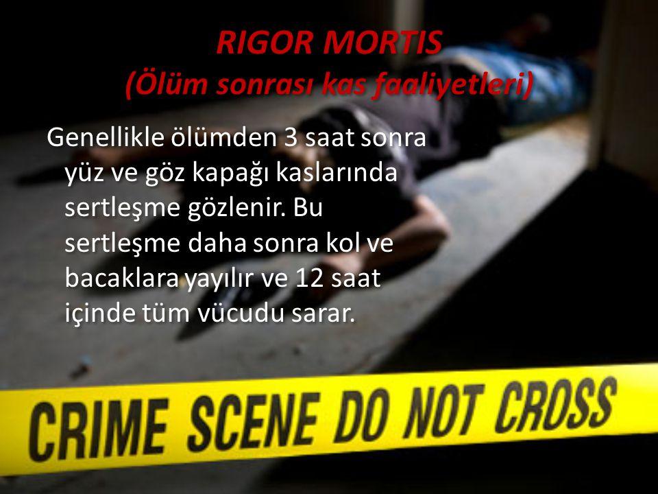 RIGOR MORTIS (Ölüm sonrası kas faaliyetleri) Genellikle ölümden 3 saat sonra yüz ve göz kapağı kaslarında sertleşme gözlenir. Bu sertleşme daha sonra