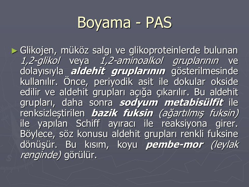 Boyama - PAS ► Glikojen, müköz salgı ve glikoproteinlerde bulunan 1,2-glikol veya 1,2-aminoalkol gruplarının ve dolayısıyla aldehit gruplarının gösterilmesinde kullanılır.