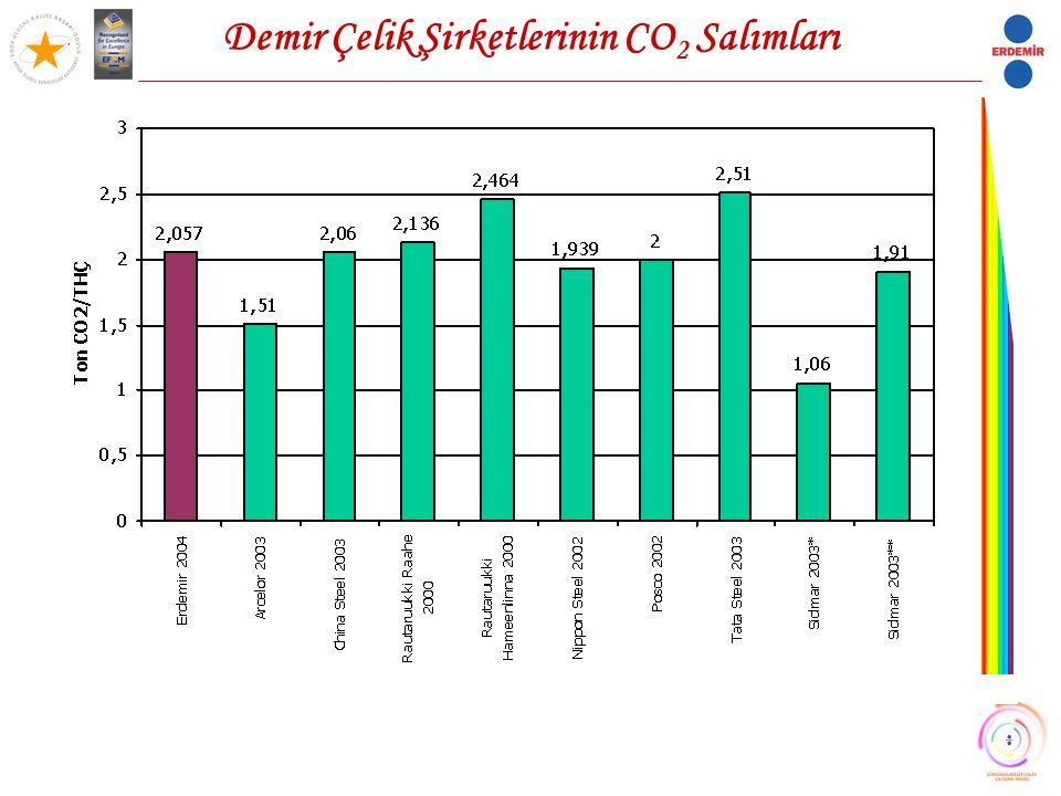 Demir Çelik Şirketlerinin CO 2 Salımları