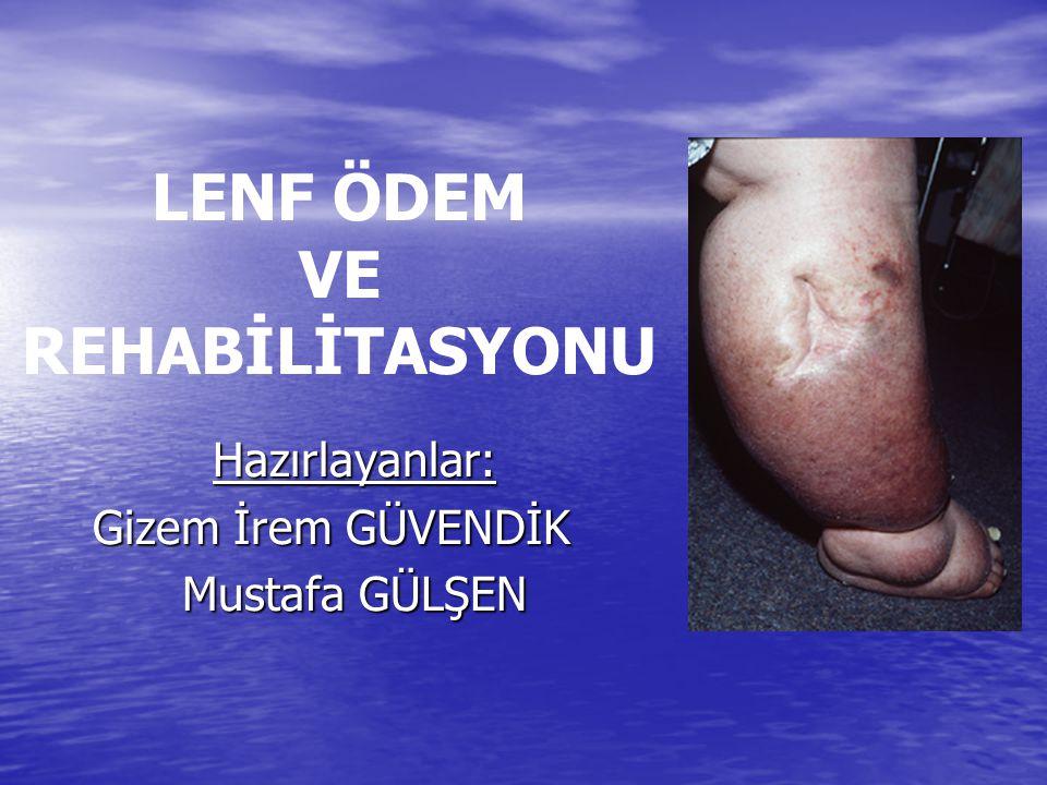 13.06.201512 Üst ekstremitenin yüzeyel ve derin lenf damarları ise aksillar lenf nodüllerine boşalırlar.