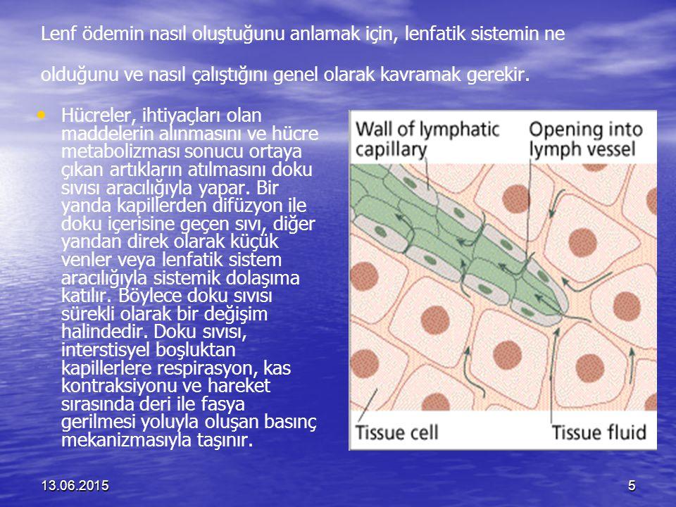 13.06.201576 PRİMER OPERE EDİLEBİLİR MEME KANSERİNİN CERRAHİSİNİ TAKİBEN BİR KOMPLİKASYON OLARAK LENF ÖDEMİN KLİNİKTE GÖRÜLME İNSİDANSI European Journal of Cancer, 39(2003):2165-2167 5cm.den büyük primer meme kanserinin tedavisinde cerrahi ve aksillar lenf nodülleri alımı yapılır.