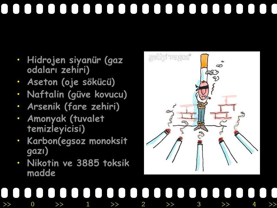 >>0 >>1 >> 2 >> 3 >> 4 >> Hidrojen siyanür (gaz odaları zehiri) Aseton (oje sökücü) Naftalin (güve kovucu) Arsenik (fare zehiri) Amonyak (tuvalet temizleyicisi) Karbon(egsoz monoksit gazı) Nikotin ve 3885 toksik madde