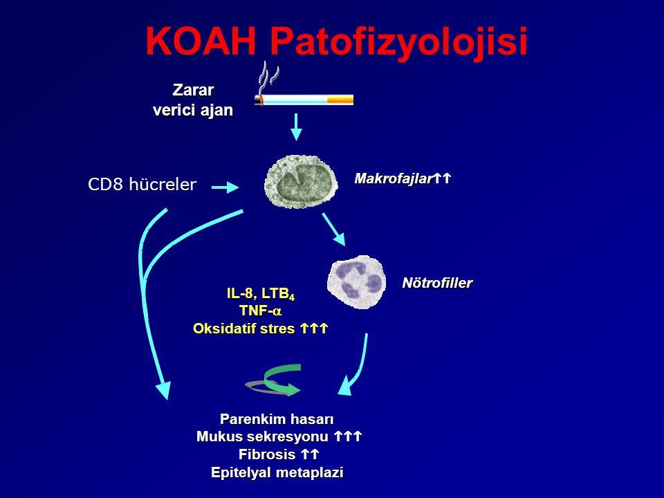 KOAH Patofizyolojisi Zarar verici ajan Parenkim hasarı Mukus sekresyonu  Fibrosis  Epitelyal metaplazi Makrofajlar  Nötrofiller IL-8, LTB 4 TNF