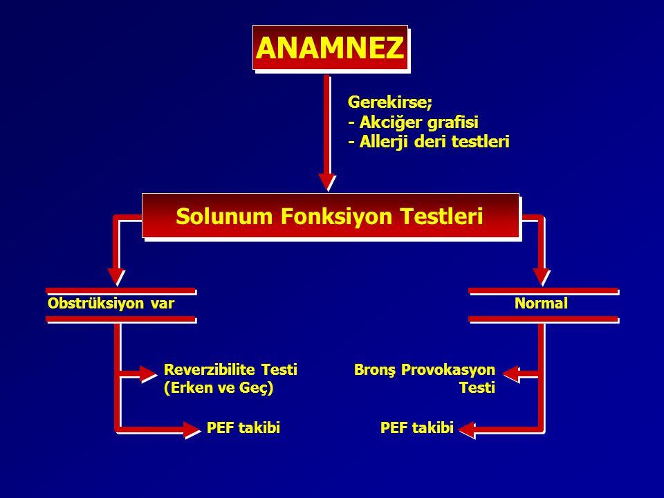 ANAMNEZ Solunum Fonksiyon Testleri Gerekirse; - Akciğer grafisi - Allerji deri testleri Obstrüksiyon varNormal Reverzibilite Testi (Erken ve Geç) PEF