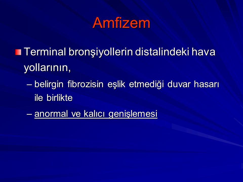 Amfizem Terminal bronşiyollerin distalindeki hava yollarının, –belirgin fibrozisin eşlik etmediği duvar hasarı ile birlikte –anormal ve kalıcı genişle