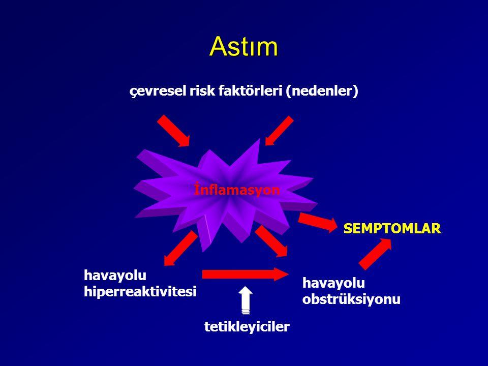 Astım İnflamasyon çevresel risk faktörleri (nedenler) havayolu hiperreaktivitesi SEMPTOMLAR havayolu obstrüksiyonu tetikleyiciler