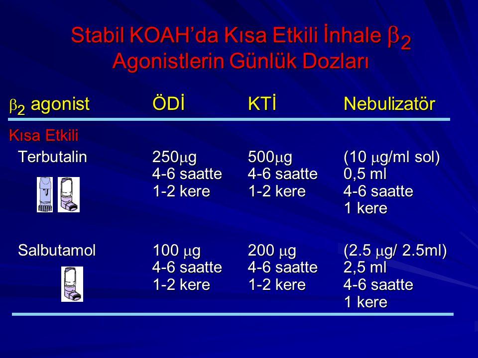  2 agonistÖDİKTİNebulizatör Kısa Etkili Terbutalin250  g500  g(10  g/ml sol) 4-6 saatte4-6 saatte0,5 ml 1-2 kere1-2 kere4-6 saatte 1 kere Terbutal