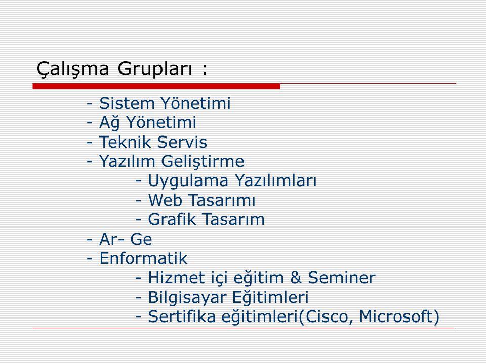 - Sistem Yönetimi - Ağ Yönetimi - Teknik Servis - Yazılım Geliştirme - Uygulama Yazılımları - Web Tasarımı - Grafik Tasarım - Ar- Ge - Enformatik - Hizmet içi eğitim & Seminer - Bilgisayar Eğitimleri - Sertifika eğitimleri(Cisco, Microsoft) Çalışma Grupları :