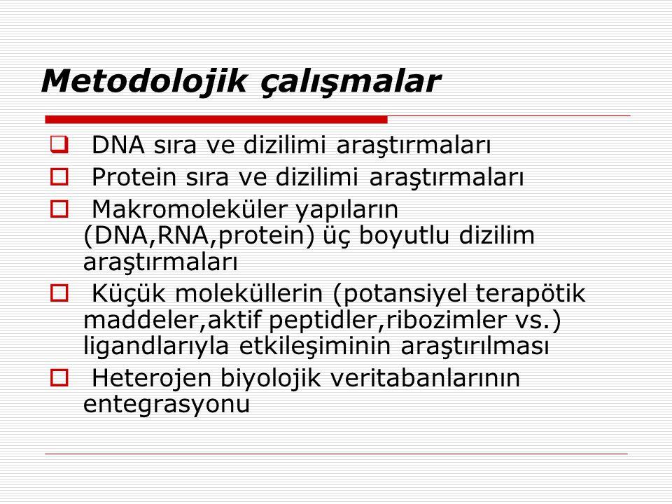 Metodolojik çalışmalar  DNA sıra ve dizilimi araştırmaları  Protein sıra ve dizilimi araştırmaları  Makromoleküler yapıların (DNA,RNA,protein) üç boyutlu dizilim araştırmaları  Küçük moleküllerin (potansiyel terapötik maddeler,aktif peptidler,ribozimler vs.) ligandlarıyla etkileşiminin araştırılması  Heterojen biyolojik veritabanlarının entegrasyonu