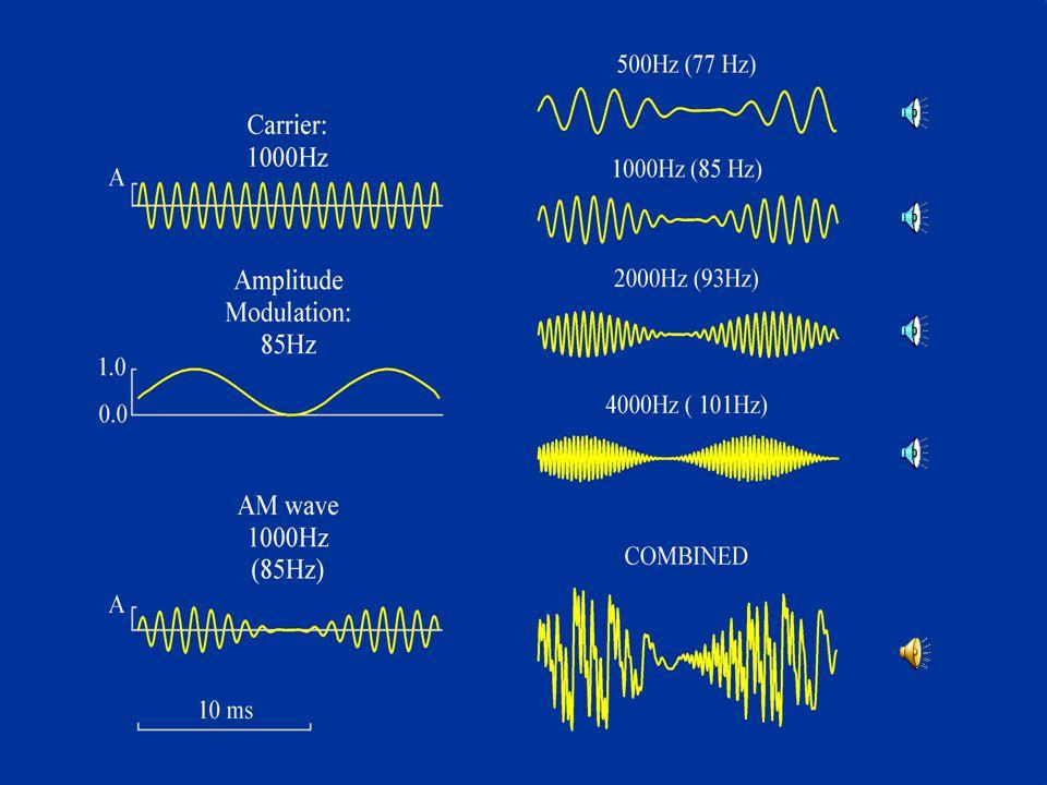 EEG + ASSR 81 Hz.54 2 1kHz