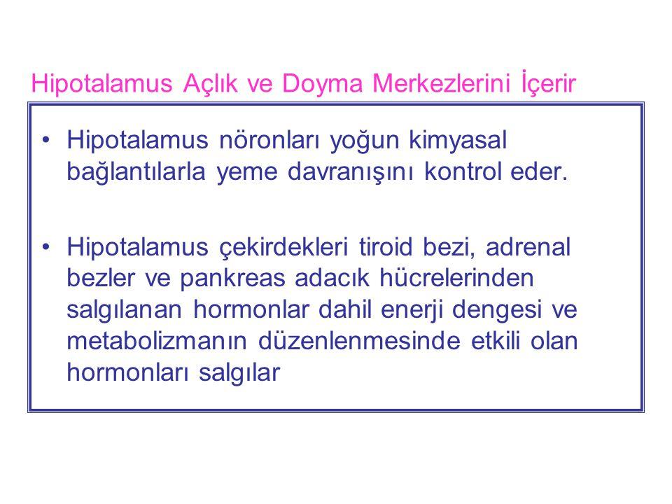 Hipotalamus Açlık ve Doyma Merkezlerini İçerir Hipotalamus nöronları yoğun kimyasal bağlantılarla yeme davranışını kontrol eder.