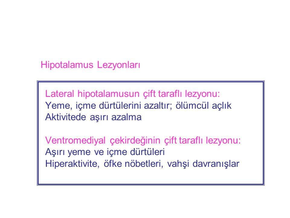 Lateral hipotalamusun çift taraflı lezyonu: Yeme, içme dürtülerini azaltır; ölümcül açlık Aktivitede aşırı azalma Ventromediyal çekirdeğinin çift taraflı lezyonu: Aşırı yeme ve içme dürtüleri Hiperaktivite, öfke nöbetleri, vahşi davranışlar Hipotalamus Lezyonları