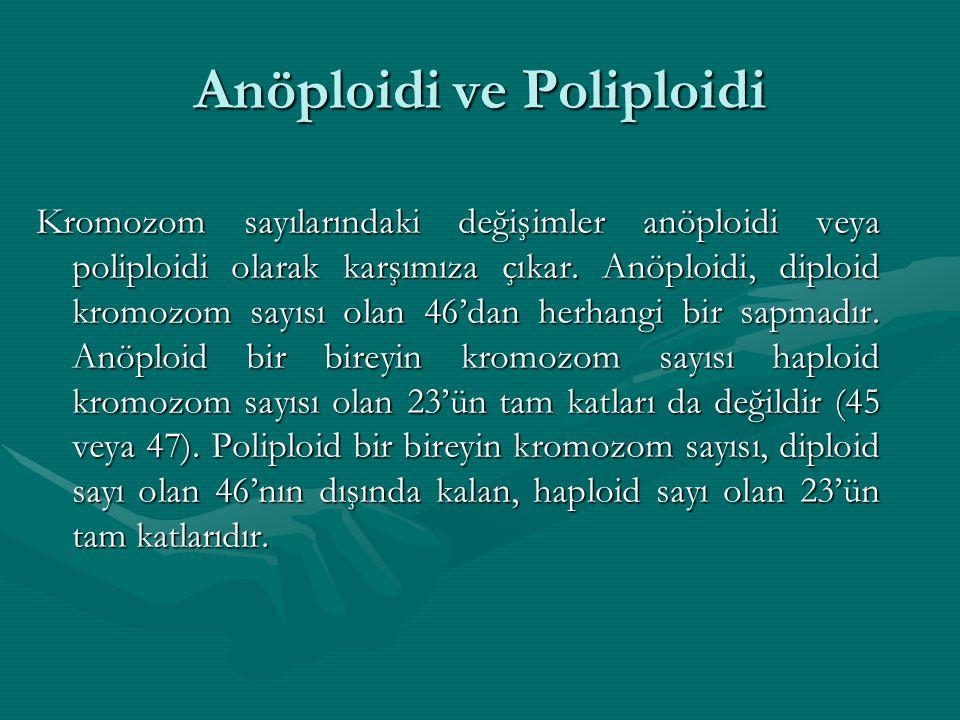 Anöploidi ve Poliploidi Kromozom sayılarındaki değişimler anöploidi veya poliploidi olarak karşımıza çıkar. Anöploidi, diploid kromozom sayısı olan 46