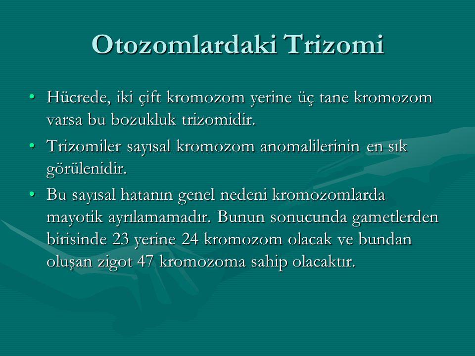 Otozomlardaki Trizomi Hücrede, iki çift kromozom yerine üç tane kromozom varsa bu bozukluk trizomidir.Hücrede, iki çift kromozom yerine üç tane kromoz