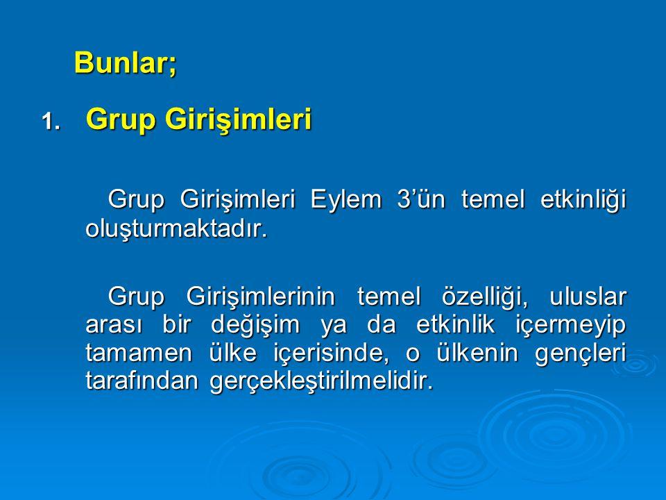 Bunlar; 1. Grup Girişimleri Grup Girişimleri Eylem 3'ün temel etkinliği oluşturmaktadır. Grup Girişimlerinin temel özelliği, uluslar arası bir değişim