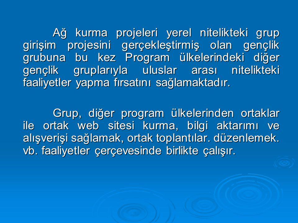 Ağ kurma projeleri yerel nitelikteki grup girişim projesini gerçekleştirmiş olan gençlik grubuna bu kez Program ülkelerindeki diğer gençlik gruplarıyla uluslar arası nitelikteki faaliyetler yapma fırsatını sağlamaktadır.