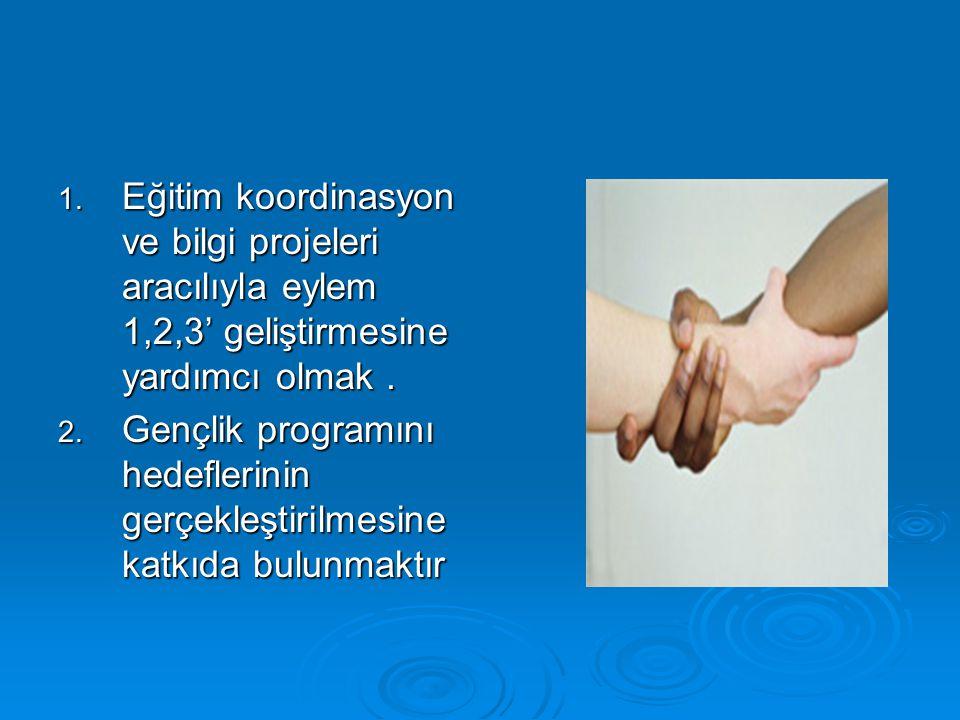 1. Eğitim koordinasyon ve bilgi projeleri aracılıyla eylem 1,2,3' geliştirmesine yardımcı olmak. 2. Gençlik programını hedeflerinin gerçekleştirilmesi