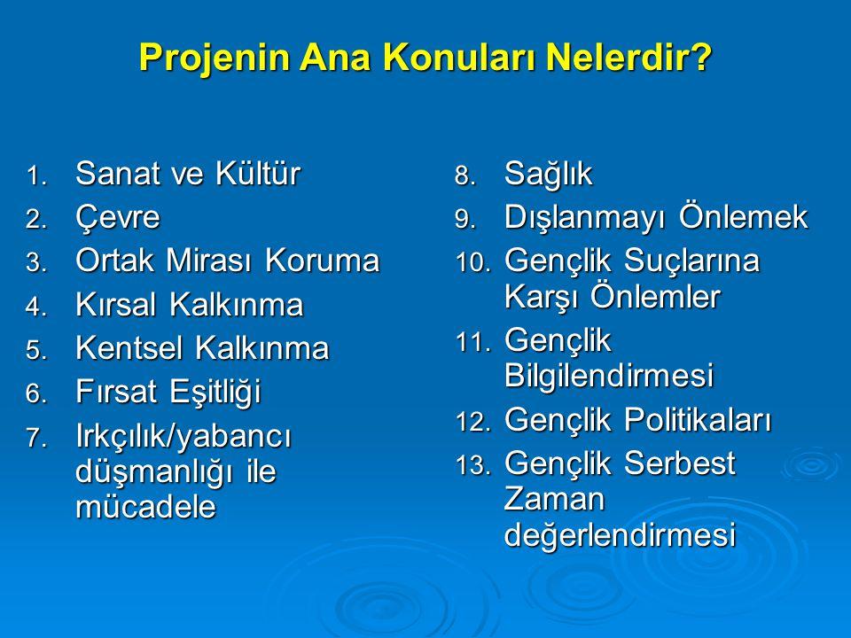 14.Gençlik Sporları 15. Basın ve İletişim 16. Avrupalılık Bilinci 17.