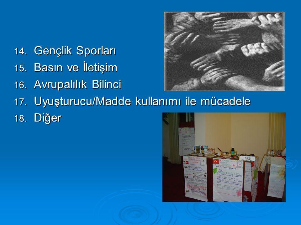 14. Gençlik Sporları 15. Basın ve İletişim 16. Avrupalılık Bilinci 17. Uyuşturucu/Madde kullanımı ile mücadele 18. Diğer
