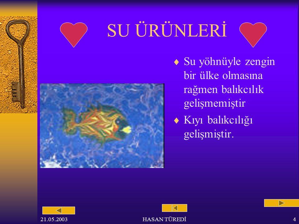 21.05.2003HASAN TÜREDİ3 HAYVANCILIK  Türkiye hayvancılığa elverişlidir.
