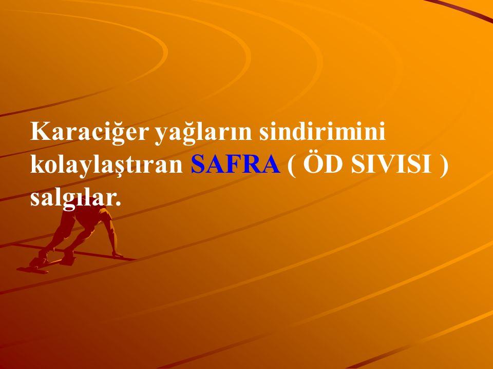 Karaciğer yağların sindirimini kolaylaştıran SAFRA ( ÖD SIVISI ) salgılar.