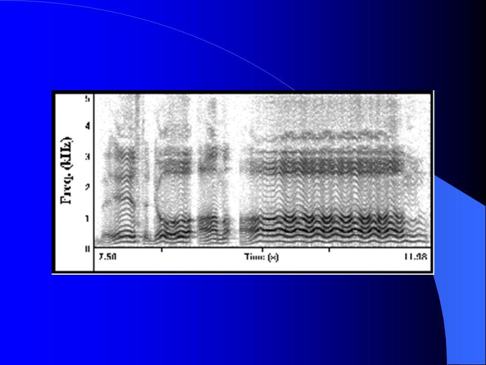Spektrogram: 1940 yılında Potter ve arkadaşları tarafından geliştirilmiş olup sesin fotoğrafı olarakta düşünülebilir.
