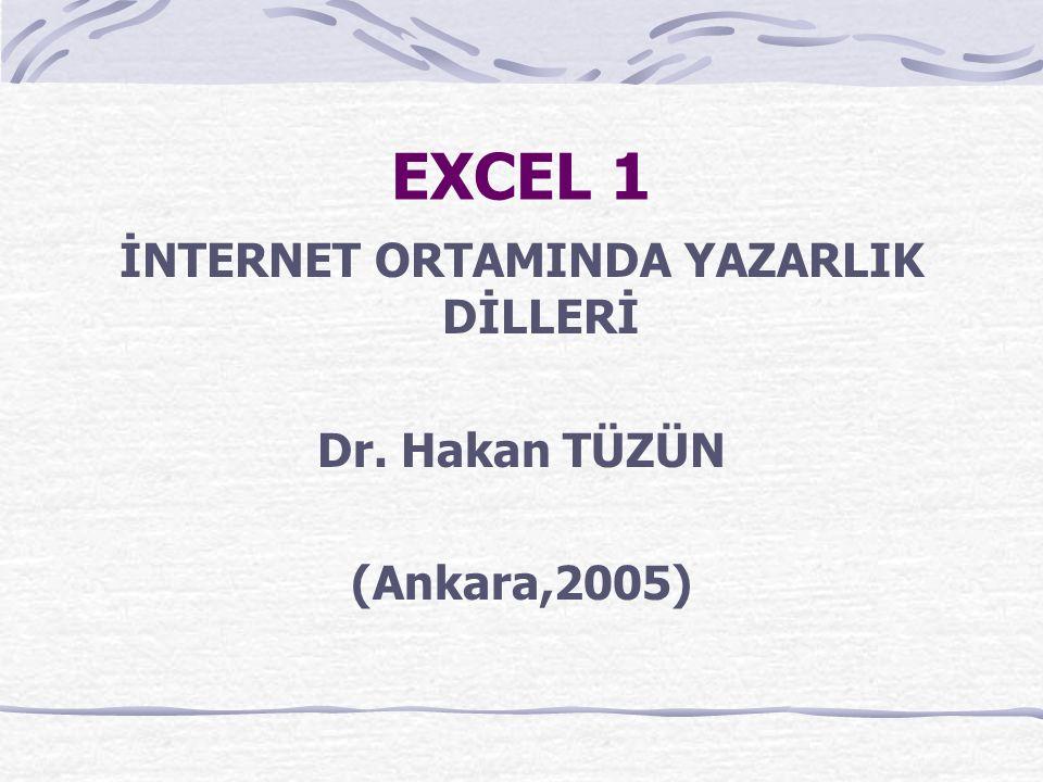 EXCEL 1 İNTERNET ORTAMINDA YAZARLIK DİLLERİ Dr. Hakan TÜZÜN (Ankara,2005)