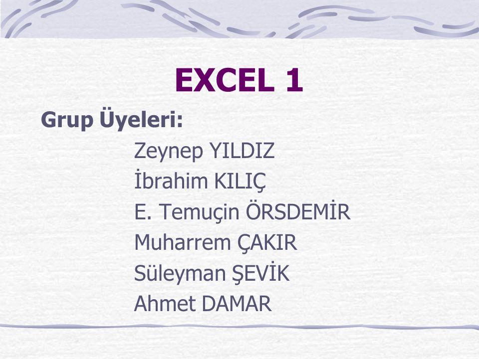 EXCEL 1 Grup Üyeleri: Zeynep YILDIZ İbrahim KILIÇ E. Temuçin ÖRSDEMİR Muharrem ÇAKIR Süleyman ŞEVİK Ahmet DAMAR