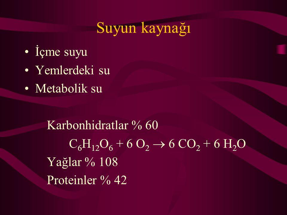 Suyun kaynağı İçme suyu Yemlerdeki su Metabolik su Karbonhidratlar % 60 C 6 H 12 O 6 + 6 O 2  6 CO 2 + 6 H 2 O Yağlar % 108 Proteinler % 42