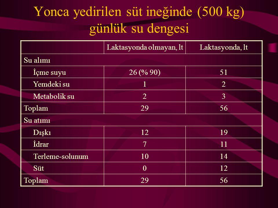 Yonca yedirilen süt ineğinde (500 kg) günlük su dengesi Laktasyonda olmayan, ltLaktasyonda, lt Su alımı İçme suyu26 (% 90)51 Yemdeki su12 Metabolik su