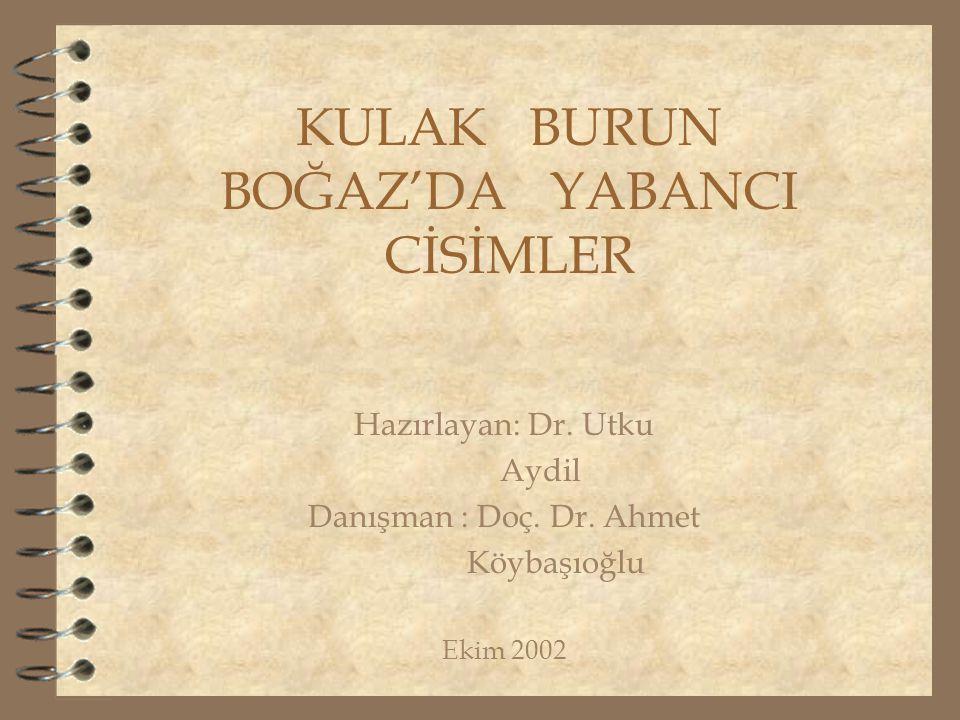 KULAK BURUN BOĞAZ'DA YABANCI CİSİMLER Hazırlayan: Dr. Utku Aydil Danışman : Doç. Dr. Ahmet Köybaşıoğlu Ekim 2002