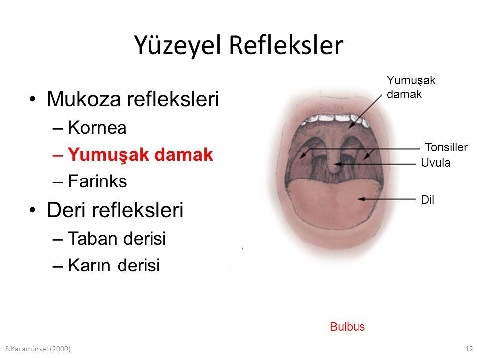 S.Karamürsel (2009)12 Yüzeyel Refleksler Mukoza refleksleri –Kornea –Yumuşak damak –Farinks Deri refleksleri –Taban derisi –Karın derisi Yumuşak damak