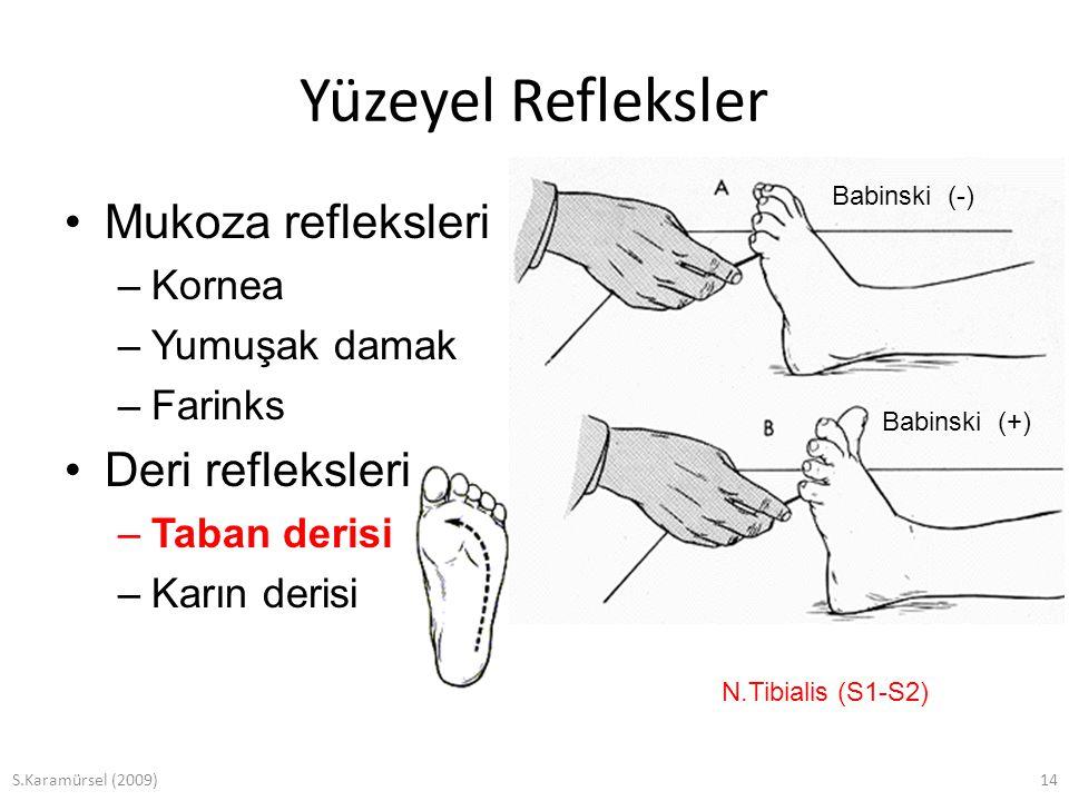 S.Karamürsel (2009)14 Yüzeyel Refleksler Mukoza refleksleri –Kornea –Yumuşak damak –Farinks Deri refleksleri –Taban derisi –Karın derisi N.Tibialis (S