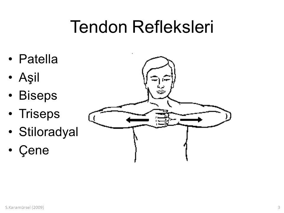 S.Karamürsel (2009)14 Yüzeyel Refleksler Mukoza refleksleri –Kornea –Yumuşak damak –Farinks Deri refleksleri –Taban derisi –Karın derisi N.Tibialis (S1-S2) Babinski (-) Babinski (+)