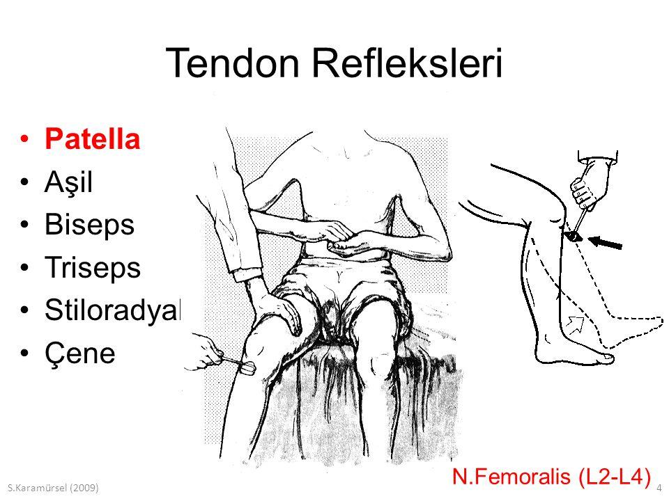 S.Karamürsel (2009)15 Yüzeyel Refleksler Mukoza refleksleri –Kornea –Yumuşak damak –Farinks Deri refleksleri –Taban derisi –Karın derisi (interkostal sinirler) –Üst (D7-D9) –Orta (D9-D11) –Alt (D12-L1)