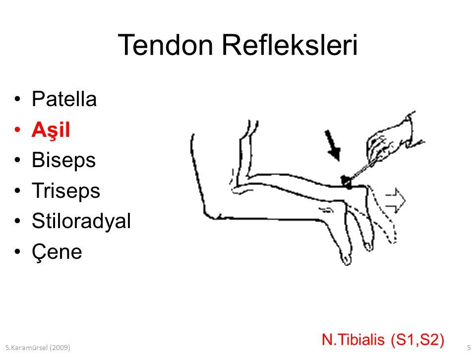 S.Karamürsel (2009)6 Tendon Refleksleri Patella Aşil Biseps Triseps Stiloradyal Çene N.Muskulokutaneus (C5-C6)