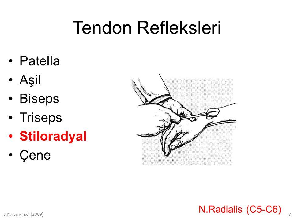 S.Karamürsel (2009)9 Tendon Refleksleri Patella Aşil Biseps Triseps Stiloradyal Çene N.Trigeminus (Pons)