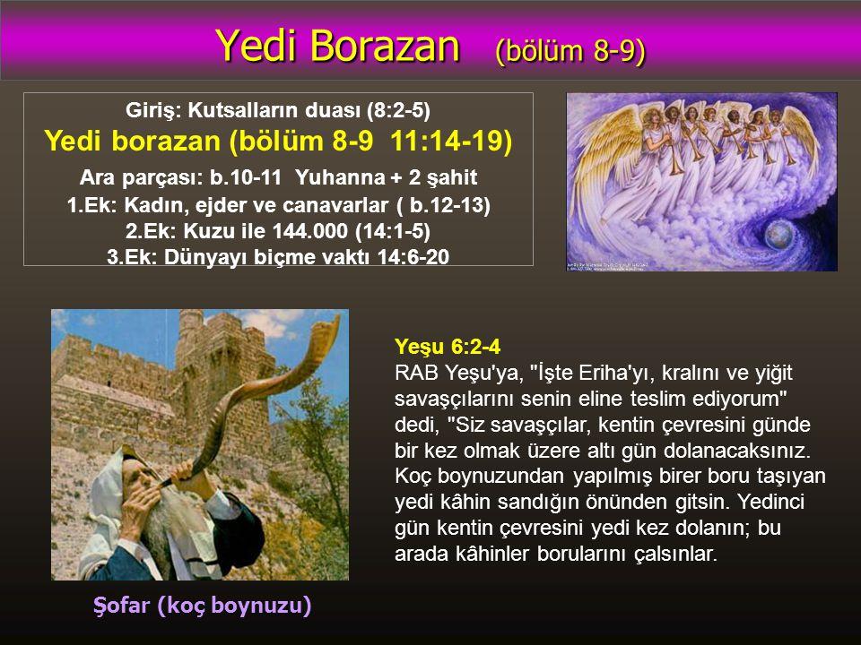 Yedi Borazan (bölüm 8-9) Giriş: Kutsalların duası (8:2-5) Yedi borazan (bölüm 8-9 11:14-19) Ara parçası: b.10-11 Yuhanna + 2 şahit 1.Ek: Kadın, ejder