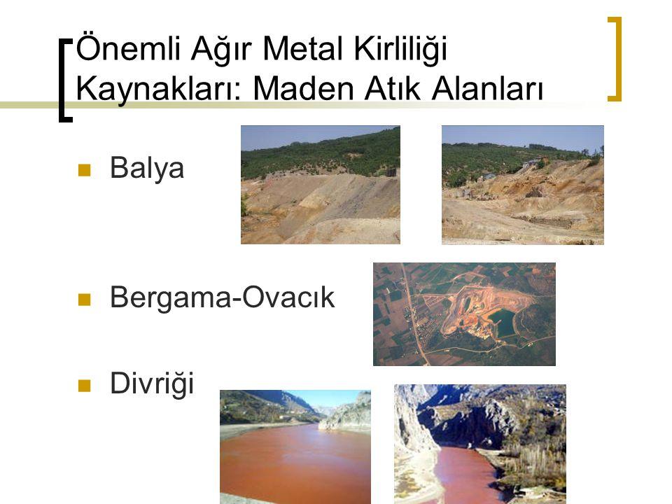 Önemli Ağır Metal Kirliliği Kaynakları: Maden Atık Alanları Balya Bergama-Ovacık Divriği