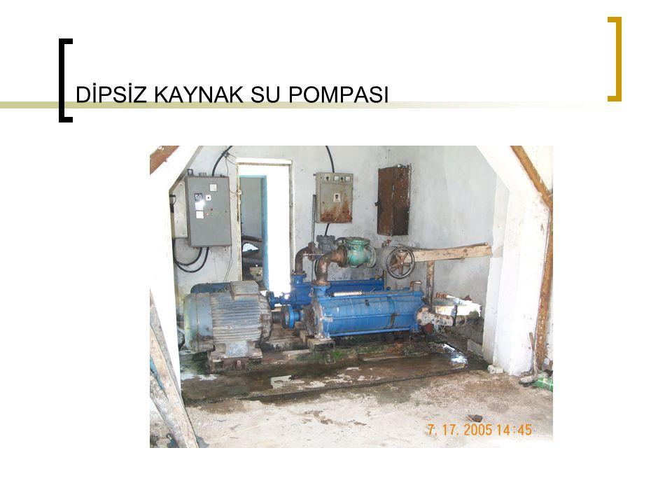 DİPSİZ KAYNAK SU POMPASI