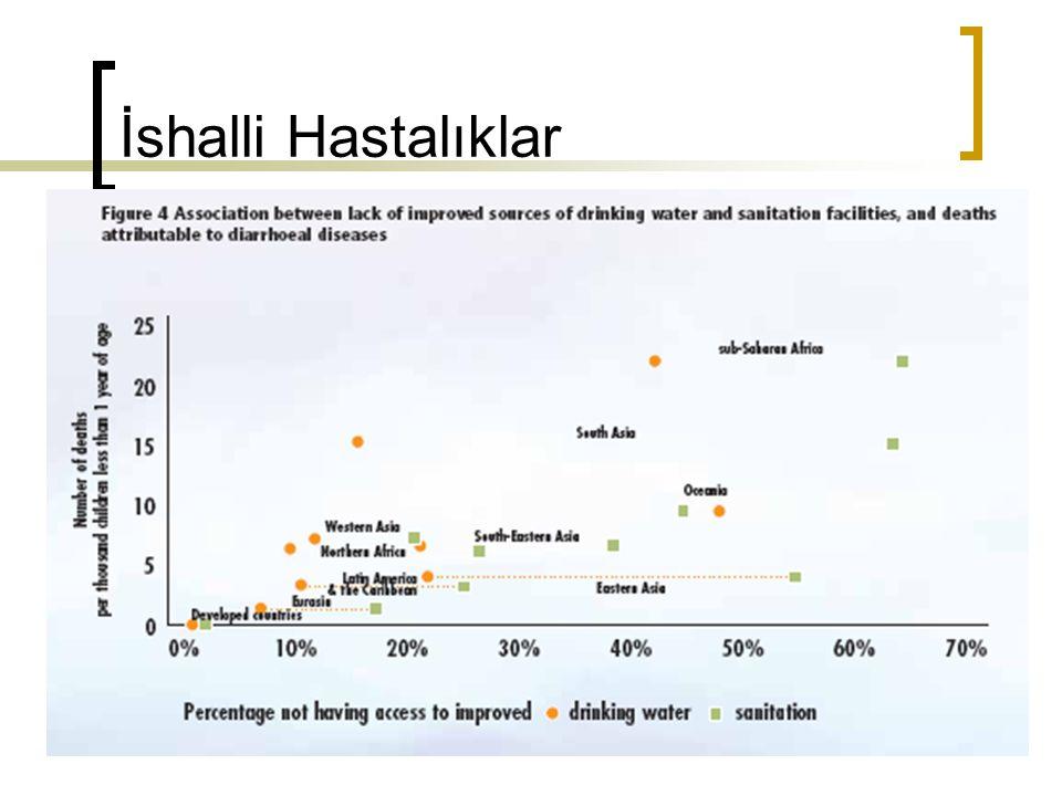 Türkiye'de su ve sağlık zemini  İçme suyu alt yapısı  Kirleticilerin kontrolü  Düzenli su kalitesinin izlenmesi  Yetişmiş insan gücü  Kamu kaynaklarının koruyucu sağlığa ayrılması  Yöneticilerin koordinasyonu  Yönetenlerin toplumla risk iletişiminin yetersizliği Her zaman toplum sağlığını riske edecek bir potansiyeli taşımaktadır.