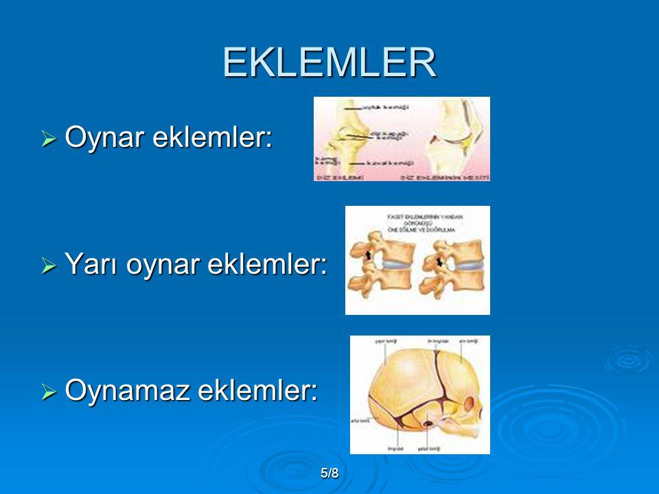 5/8 EKLEMLER  Oynar eklemler:  Yarı oynar eklemler:  Oynamaz eklemler: